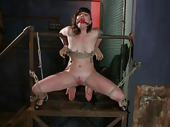 Here's pretty Sahara Rain, a cute wench with small love bubbles and a very constricted cunt. Sahara has been fastened by that wooden structure, ball gagged and her thighs fastened wide open. I start rubbing her twat with a vibrator and that babe burst with pleasure like a fucking whore. Think I should now stuff her constricted twat with something.
